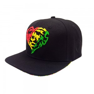 Lauren Rose Lionhearted Rasta Snapback