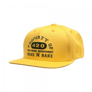 LAUREN ROSE CHAIBA WAKE & BAKE YELLOW SNAPBACK 420