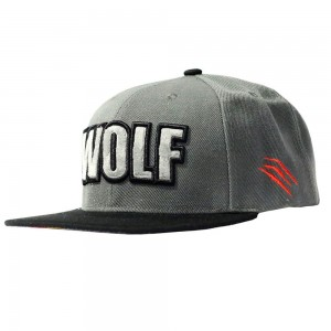 Wolf Grey Snapback
